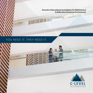 https://c-levels.com/wp-content/uploads/2015/07/CLevel-Corp-Brochure_r2_Web-1-300x300.jpg